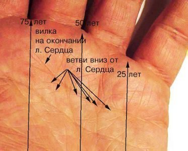 Обозначение линии на руке