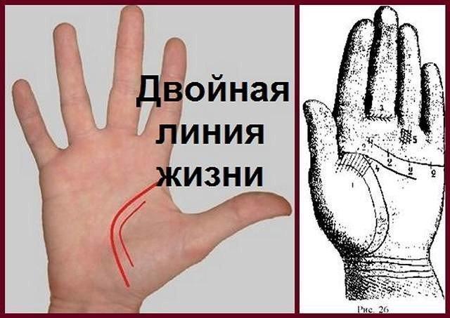 Линия жизни на руке - фото с расшифровкой