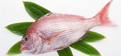 Заговор на рыбу
