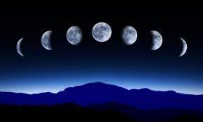 Подробный лунный календарь посадочных дней на вторую половину мая 2020 года