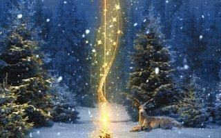 Заговоры и обряды на Рождество в 2021 году