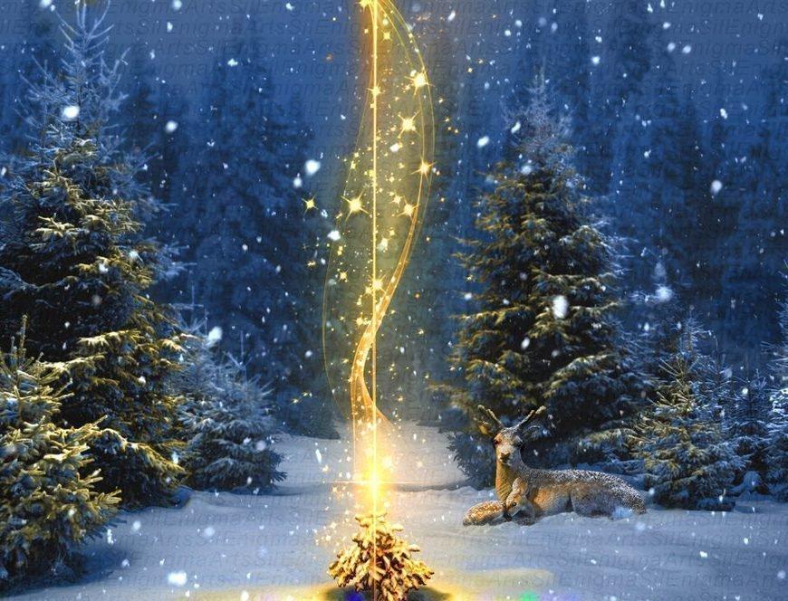 Обряды на Рождество магия святого дня