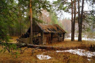 Дом лешего
