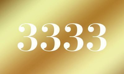 3333-znachenie-chisla