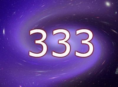 Число 333