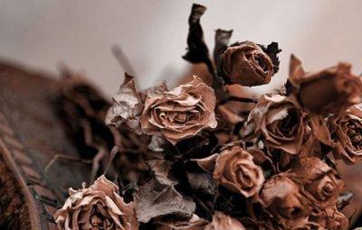 Кладбищенские цветы