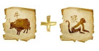 бык и обезьяна совместимость