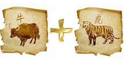 бык и тигр совместимость