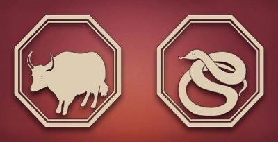 бык и змея совместимость