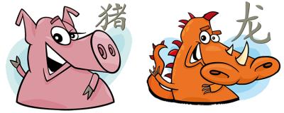 дракон и свинья совместимость