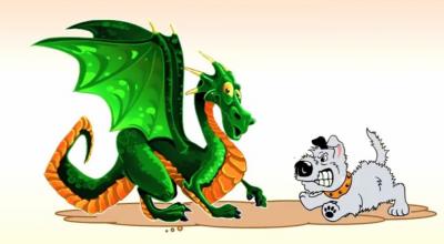 собака и дракон совместимость