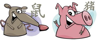 совместимость крыса и свинья