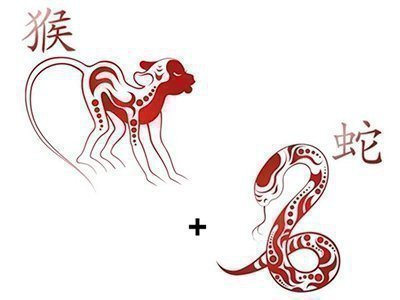 обезьяна и змея