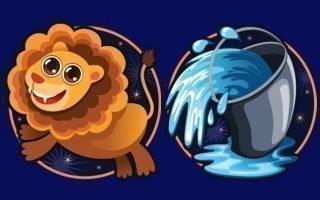 Совместимость знаков Льва и Водолея