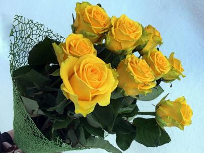 желтые розы дарят к чему