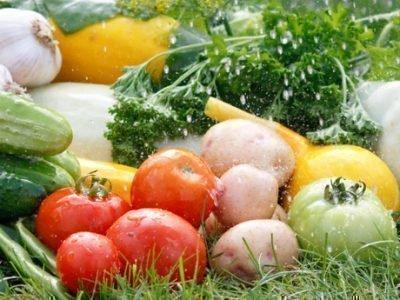 Народные приметы на урожай