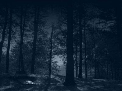 Ритуал в лесу