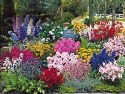 Цветник в саду
