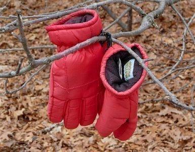 Две потерянные перчатки