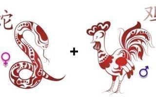 Совместимость Петуха и Змеи по китайскому гороскопу