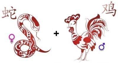 Совместимость Змеи и Петуха