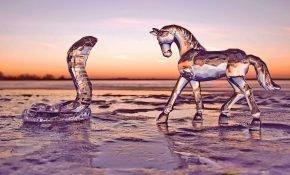 Прогноз совместимости Лошади и Змеи по восточному гороскопу