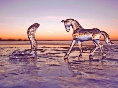 змея и лошадь совместимость