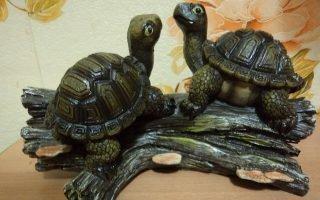 Что означает символ черепахи в амулете