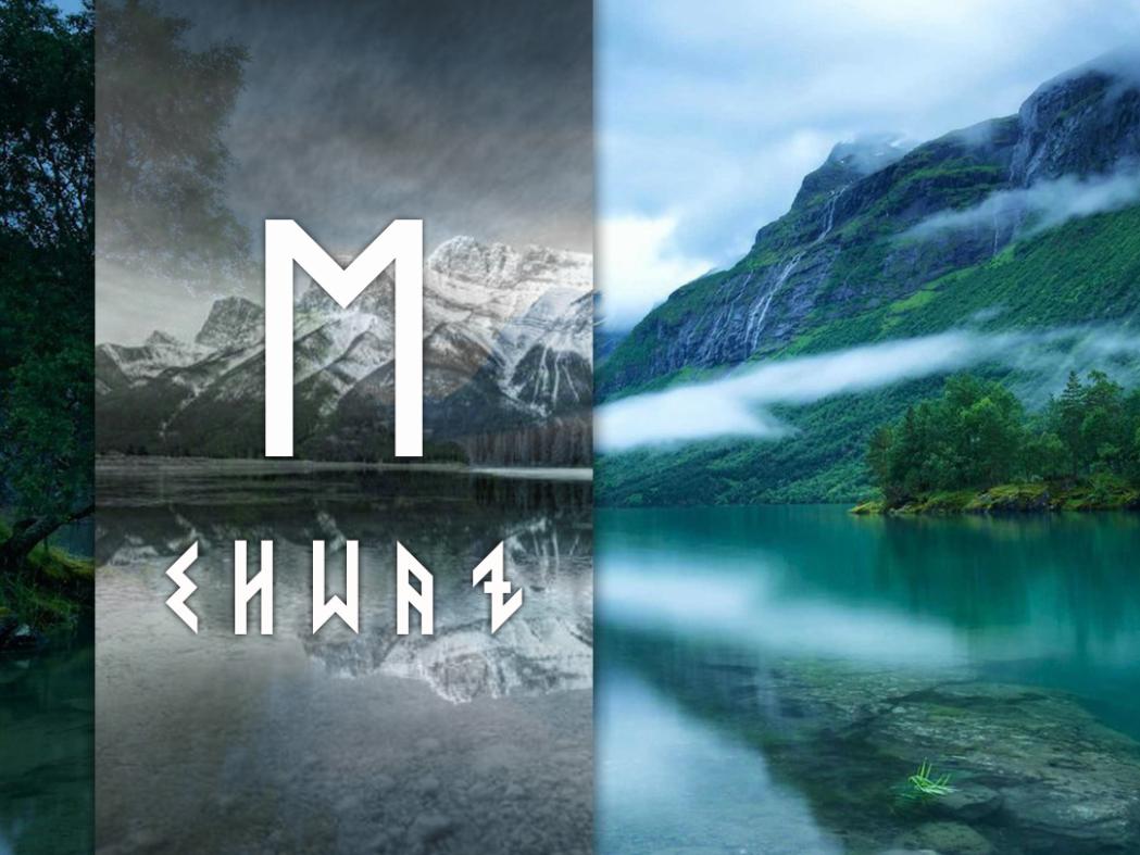 Руна Эваз — что значит этот скандинавский символ в магии и гадании