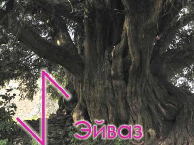 Символ Эйваз - тис