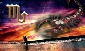 Совместимость Скорпиона в любви и браке