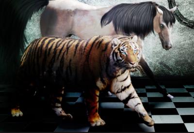 Тигр и Лошадь - совместимость
