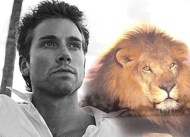 Лев ♌: совместимость в любви и отношениях с другими знаками зодиака