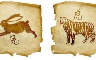Совместимость Тигра и Кролика