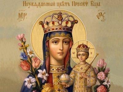 Молитва перед иконой Богородицы «Неувядаемый цвет»