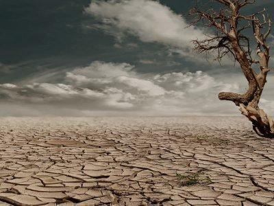 Катастрофическая засуха