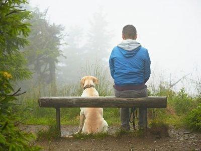 Разница между душой у человека и животного