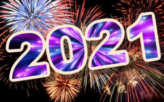 Новогодний наряд 2021 по знаку Зодиака