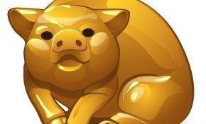 Гороскоп 2021 по году рождения для женщины-Свиньи
