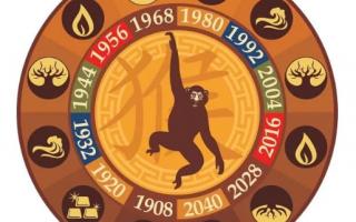 Гороскоп 2021 по году рождения для мужчины-Обезьяны