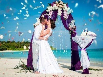 Свадьба в августе 2020 беол-фиолетовый)