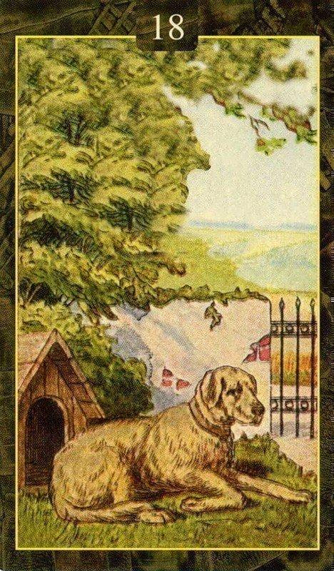 Карты Ленорман. Собака