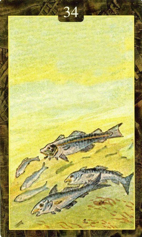 Карты Ленорман. Рыбы