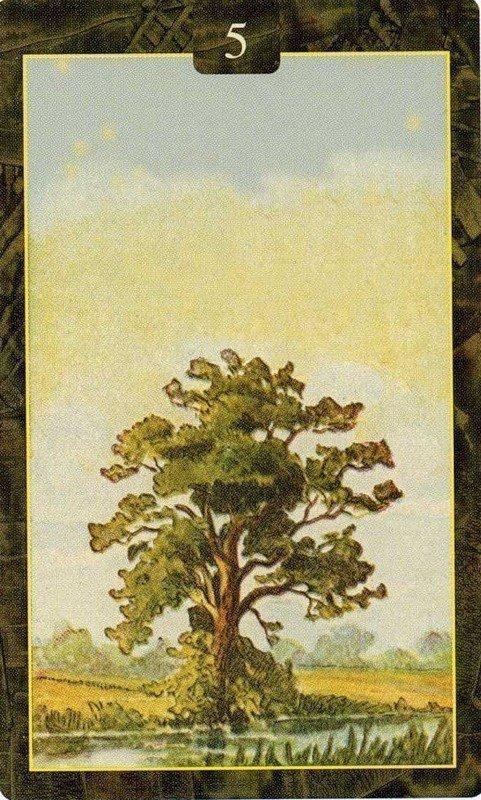 Карты Ленорман. Дерево
