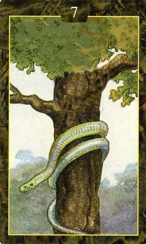 Карты Ленорман. Змея