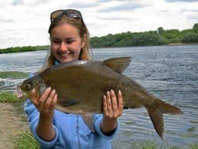 Значение сна про рыбу в руках