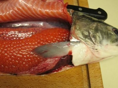 К чему снится рыба с икрой