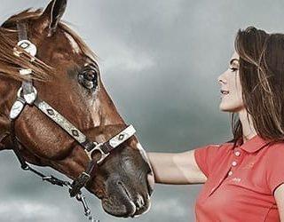 Снится коричневая лошадь - толкование