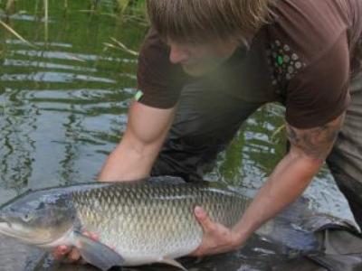 Сон ловить рыбу в мутной воде - значение