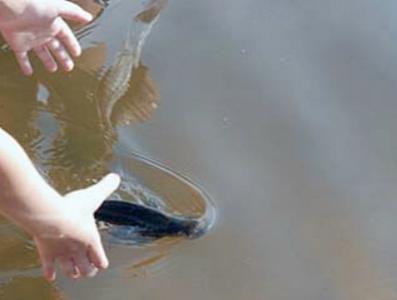 Ловля рыбы голыми руками - что означает сон